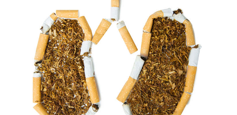Pluca Palacza Oczyszczanie Pluc Po Rzuceniu Palenia Dimedic Eu